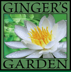 gingers garden